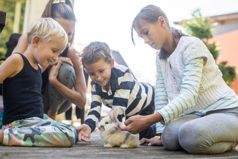 Jonge moeder met drie jonge geitjes die hun huisdierenkonijn petting stock fotografie