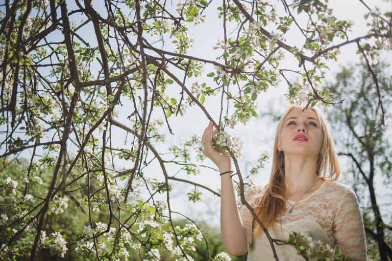 Jonge mooie blondevrouw in bloeiende tuin Bruid Het gevoelige meisje geniet de lente van aard stock fotografie