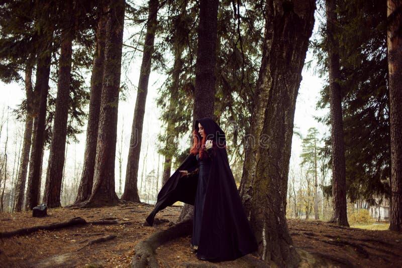 Jonge mooie en geheimzinnige vrouw in hout, in zwarte mantel met kap, beeld van boself of heks royalty-vrije stock afbeelding