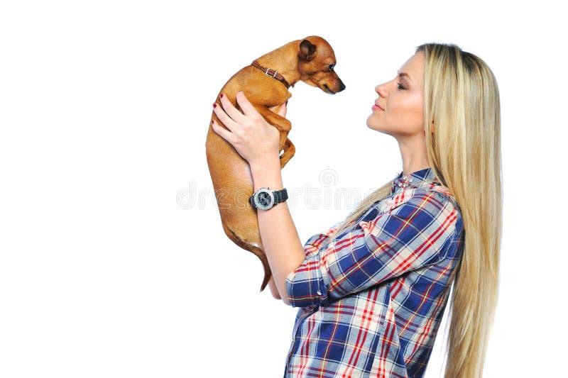 Jonge mooie gelukkige vrouw die kleine hond houdt stock afbeeldingen