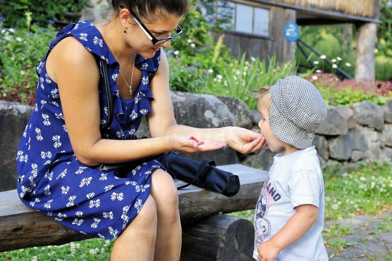 Jonge mooie moeder die haar weinig kind in openlucht voeden wilde aardbei royalty-vrije stock fotografie