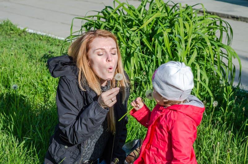 Jonge mooie moeder met aanbiddelijk weinig meisje van de dochterbaby met lang haar Europeanen in een weide met gras en bloemen, p stock afbeelding