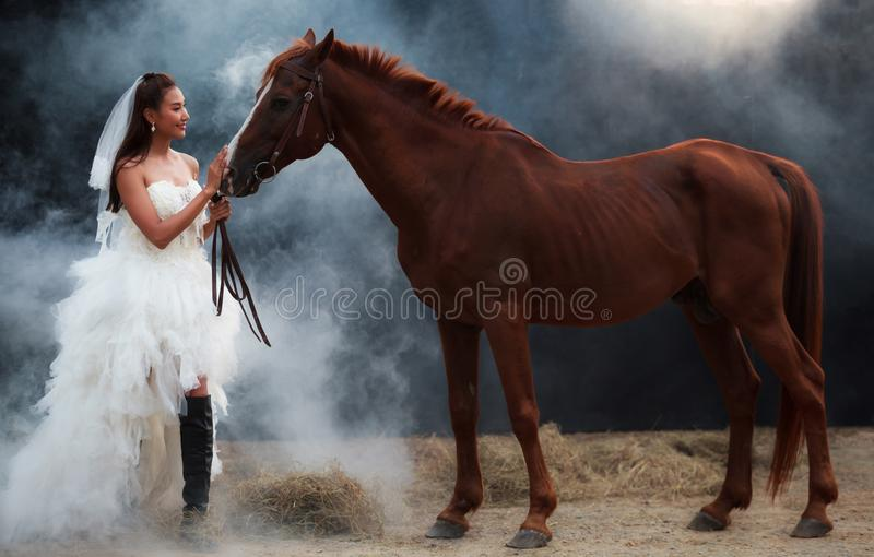 Jonge mooie schoonheidsbruid in het kostuumtribune van het manier witte huwelijk met knap paard op zwarte achtergrond stock fotografie