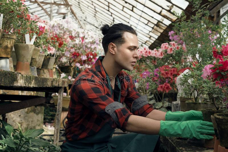 Jonge mooie tuinman in groene tuinhandschoenen met trebdy kapsel royalty-vrije stock fotografie