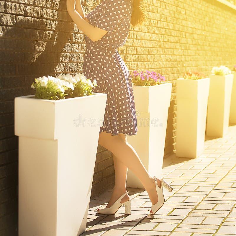 Jonge mooie vrouw in blauwe sundress die in de zomer dichtbij de rotsmuur stellen op de achtergrond van bloembedden royalty-vrije stock foto