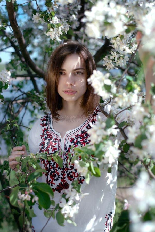 Jonge mooie vrouw dichtbij de appelboom royalty-vrije stock foto