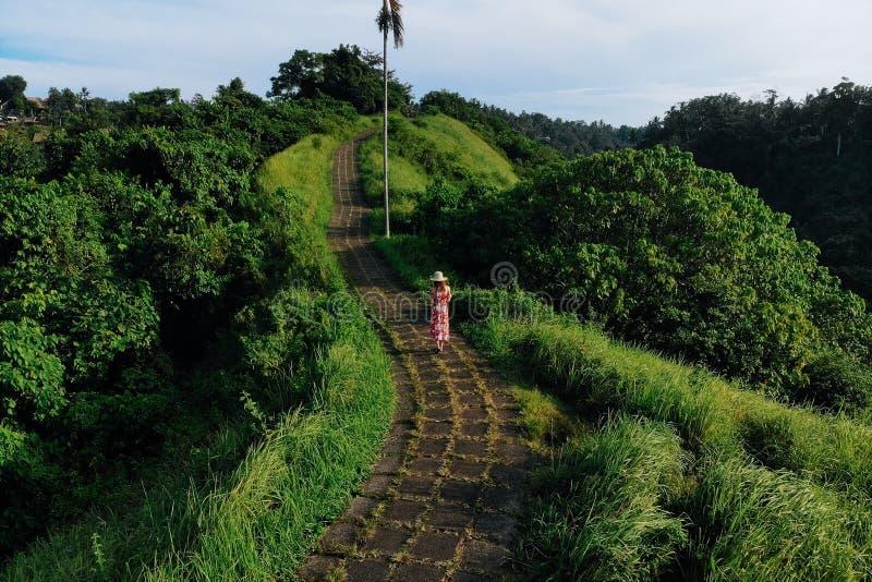 Jonge, mooie vrouw die op Campuhan Ridge loopt, op de manier van kunstenaars, in Bali, Ubud Mooie, kalme zonnige ochtend stock foto's