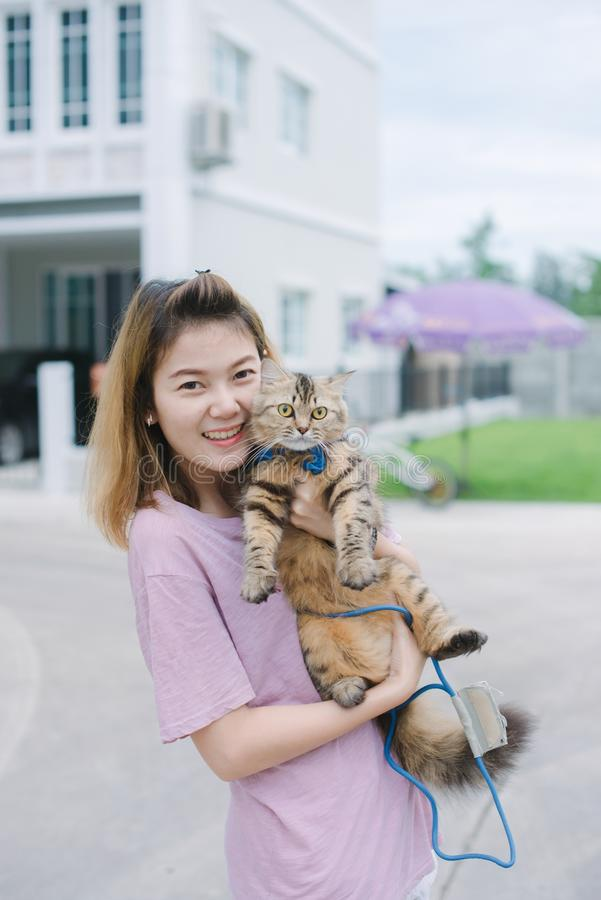 Jonge mooie vrouw met Perzische kat stock afbeeldingen