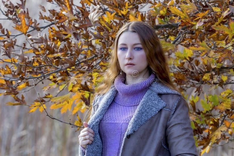 Jonge mooie vrouw op de achtergrond van het de herfstbos royalty-vrije stock foto