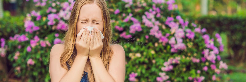 Jonge mooie vrouwen blazende neus voor bloeiende boom Het conceptenbanner van de de lenteallergie, LANG FORMAAT stock afbeeldingen