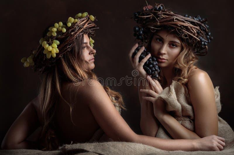 Jonge mooie vrouwen met wijnstokkroon op hoofden stock afbeelding