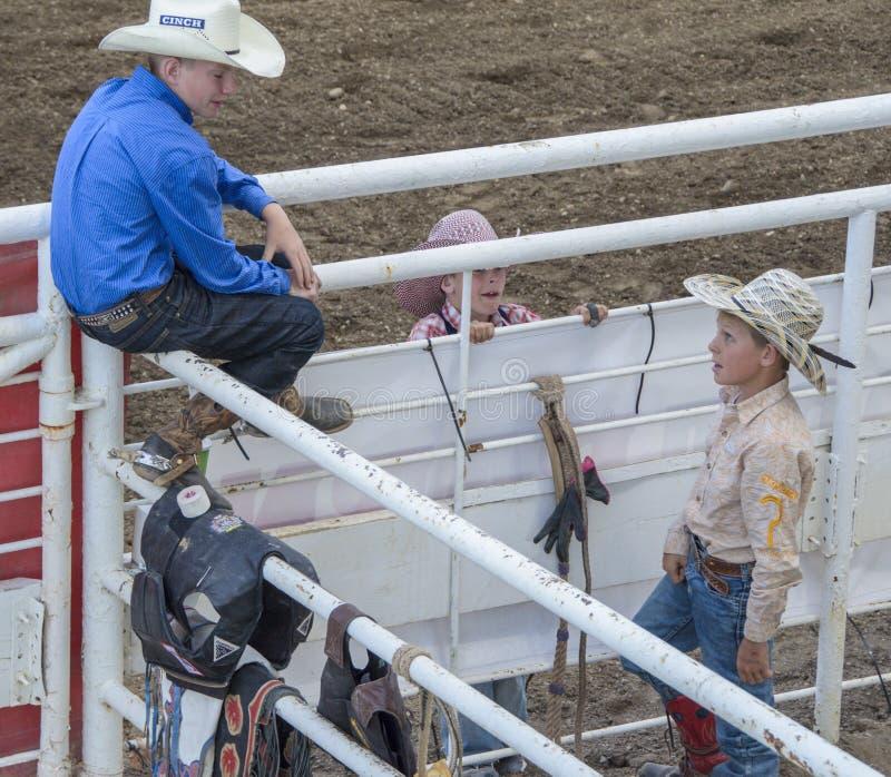 Jonge Opgewekte cowboys royalty-vrije stock foto