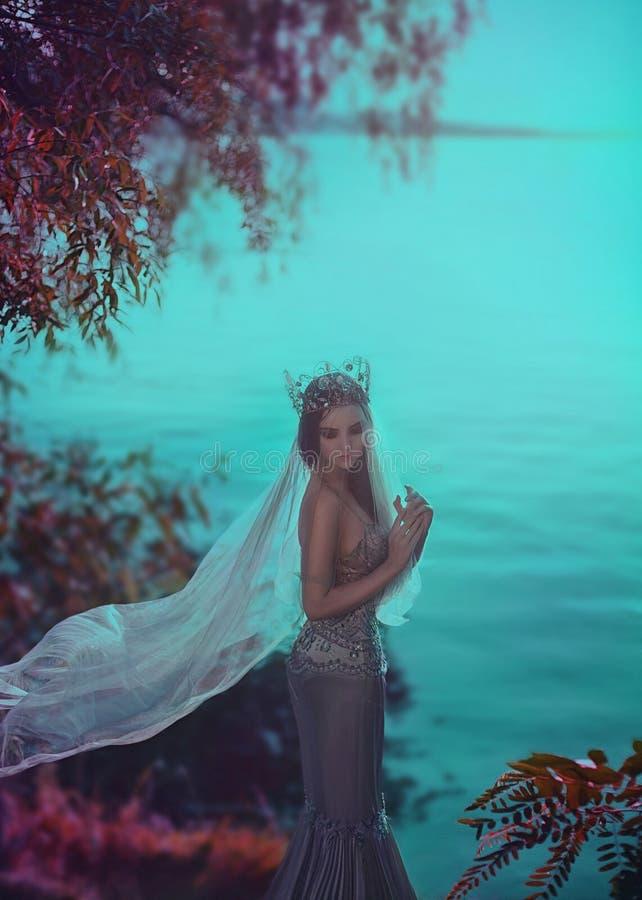 Jonge prinses in een zilveren kleding stock foto