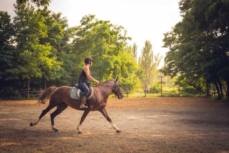 Jonge ruiter en paardtrein vóór de concurrentie Ruiter op een paard stock fotografie