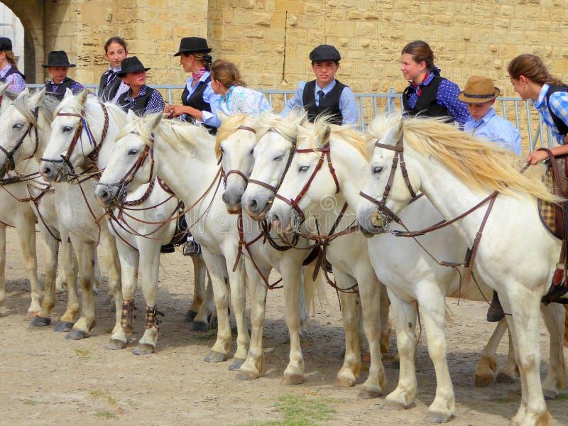 Jonge ruiters op witte paarden stock foto's
