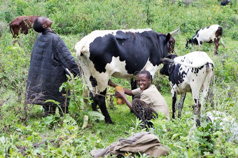 Jonge Rwandese landbouwers royalty-vrije stock fotografie
