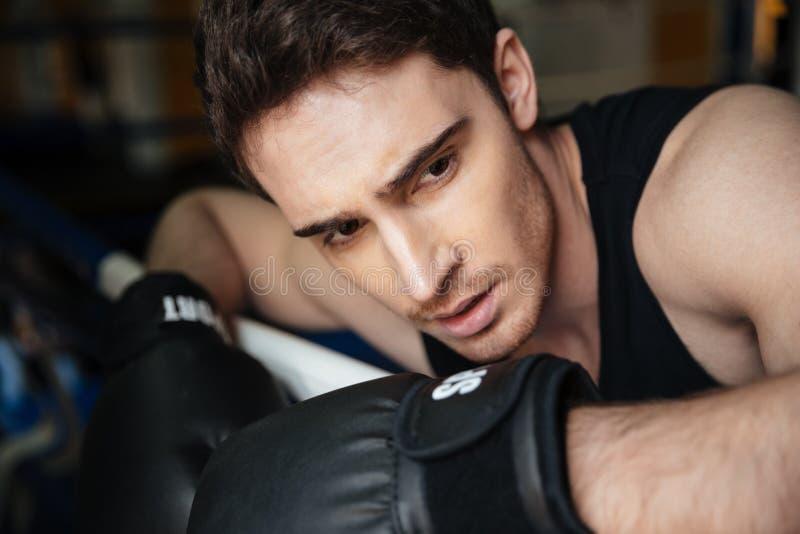 Jonge sterke bokser opleiding in een boksring stock afbeelding