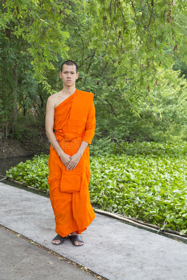 Jonge Thaise Monniken royalty-vrije stock foto's