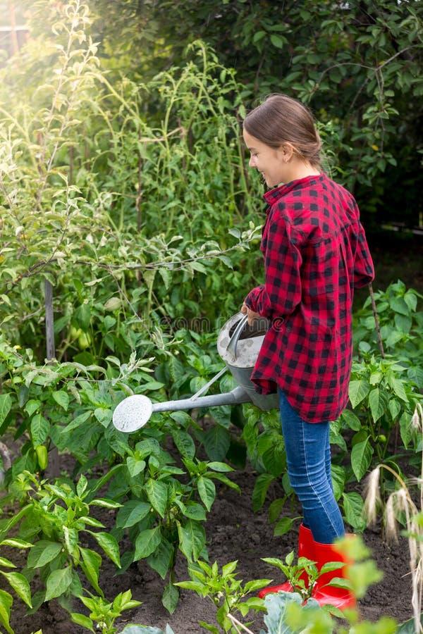 Jonge tiener die in tuin en het water geven groenten van grote gieter werken stock foto's