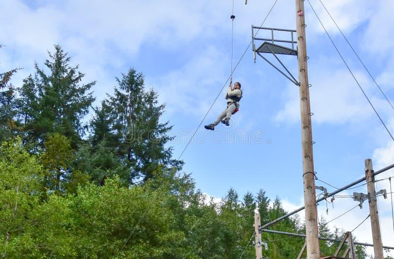 Jonge tienervrouw in een treetop avontuur van het kabelpark stock afbeelding