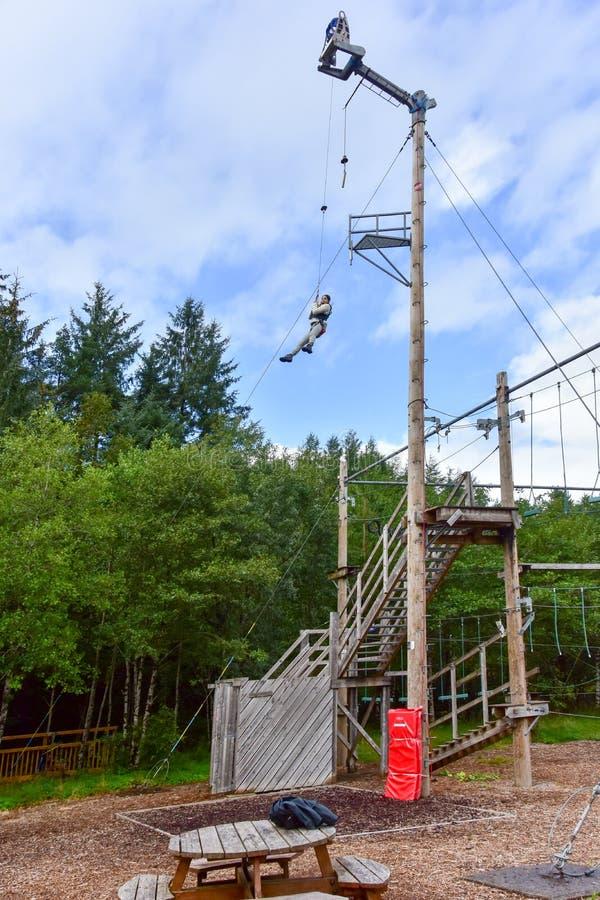 Jonge tienervrouw in een treetop avontuur van het kabelpark royalty-vrije stock foto