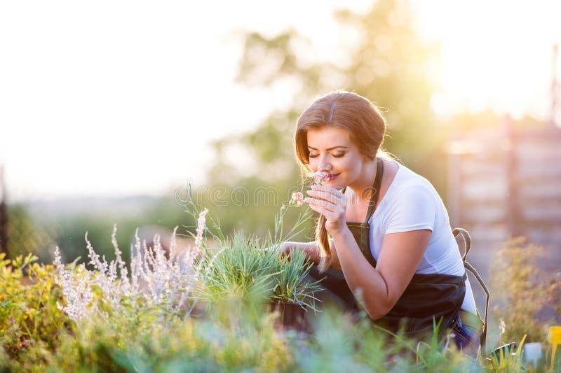Jonge tuinman in tuin ruikende bloem, zonnige aard royalty-vrije stock foto's