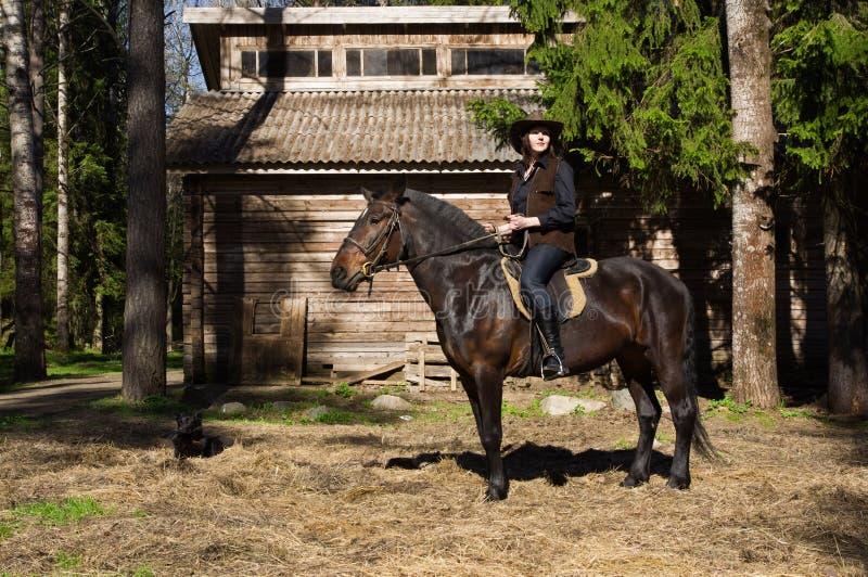 Jonge veedrijfster op bruin paard stock fotografie