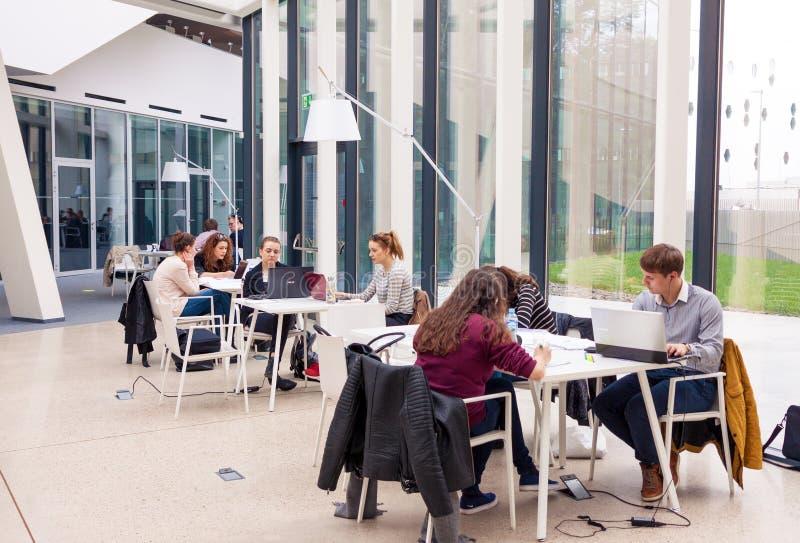 Jonge volwassen studenten die in moderne bibliotheek en het bestuderen zitten stock foto