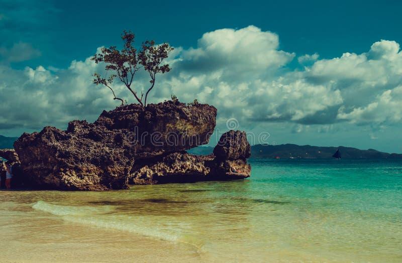 Jonge volwassenen Reis naar Filippijnen Luxevakantie Het eiland van het Boracayparadijs De achtergrond van de aard Wit Strand Tro stock fotografie