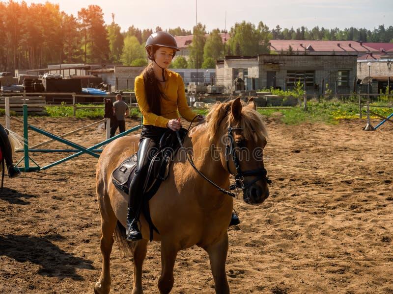 Jonge vrolijke meisjesritten op een bruin paard Het berijden opleiding Horseback het berijden royalty-vrije stock foto