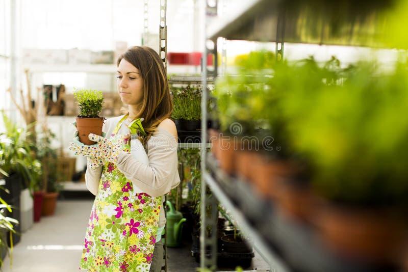 Download Jonge vrouw in bloemtuin stock foto. Afbeelding bestaande uit leisure - 39108716