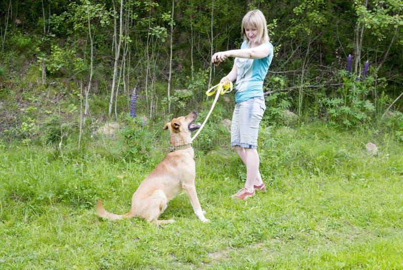 Jonge vrouw die bevelen geven aan haar hond terwijl het lopen op strand royalty-vrije stock foto's