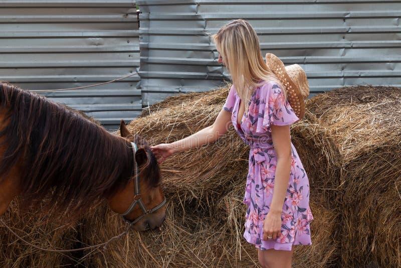 Jonge vrouw die een bruin paard strijken vóór een gang die hooi dichtbij de hooiberg op een de zomer duidelijke dag eet royalty-vrije stock foto
