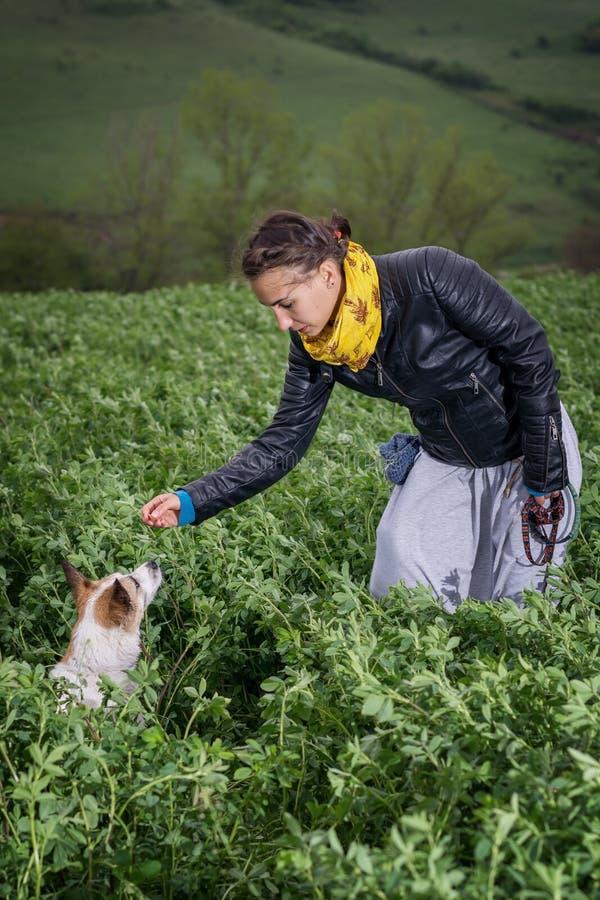 Jonge vrouw die haar hond opleidt stock foto's