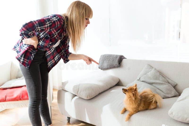 Jonge vrouw die haar hond thuis berispen stock foto