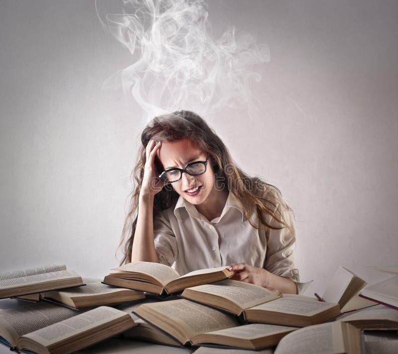 Jonge vrouw die hard bestuderen royalty-vrije stock foto