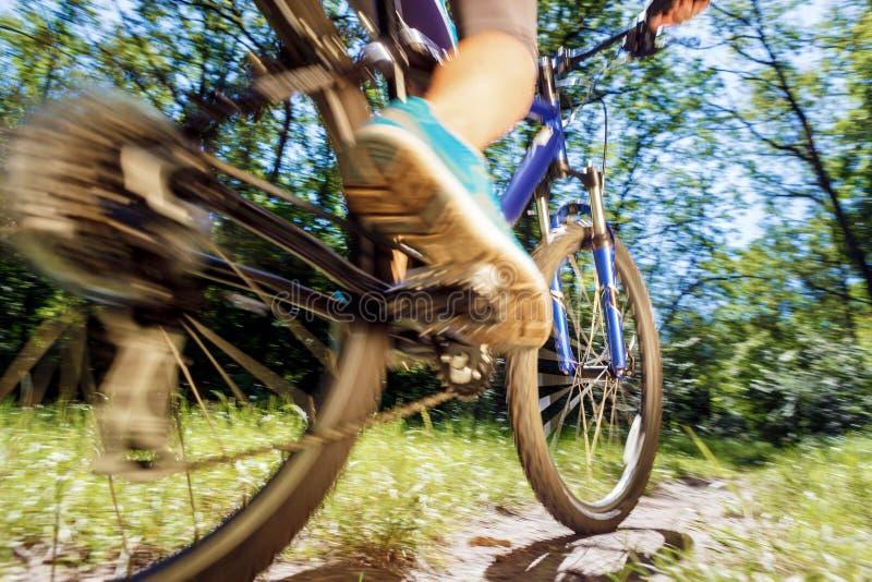 Jonge vrouw die op bergfiets berijden stock afbeelding