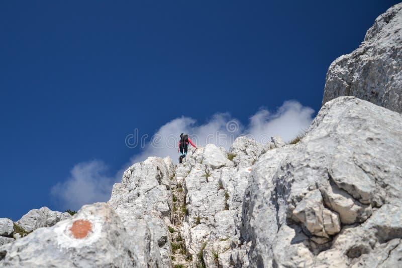 Jonge Vrouw die op de Bergen van Piatra beklimmen Craiului stock foto's