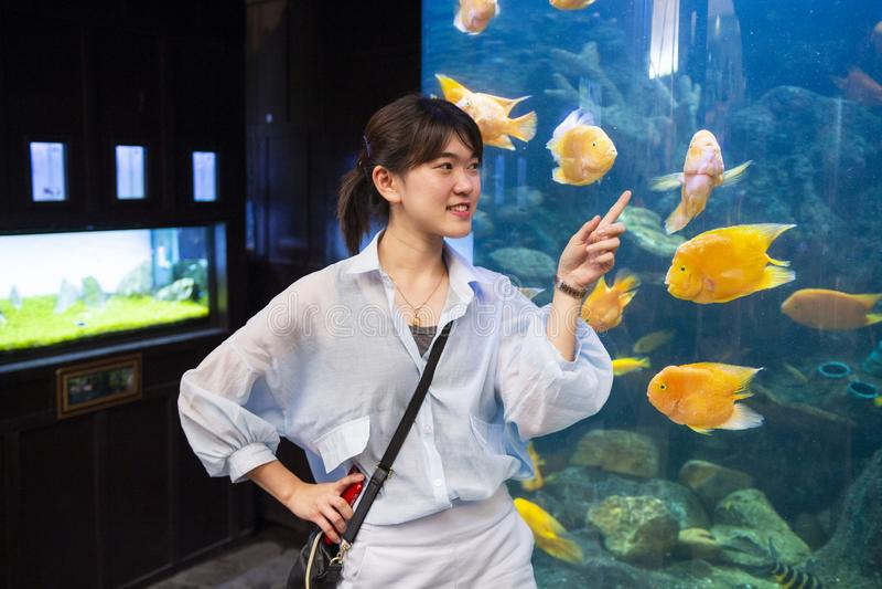 Jonge vrouw die vissen in een tank richten stock afbeeldingen