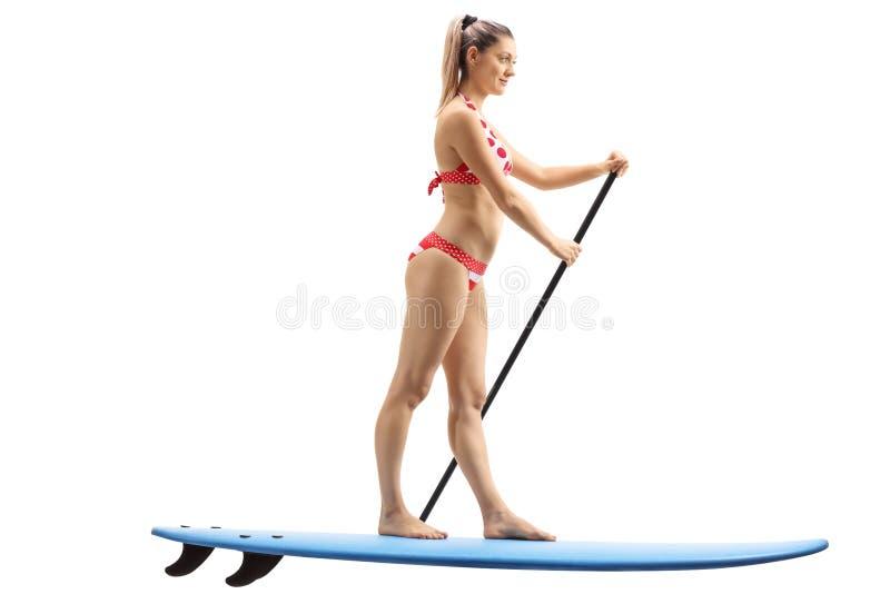 Jonge vrouw die zich op een surfplank en het paddelen bevinden royalty-vrije stock foto's