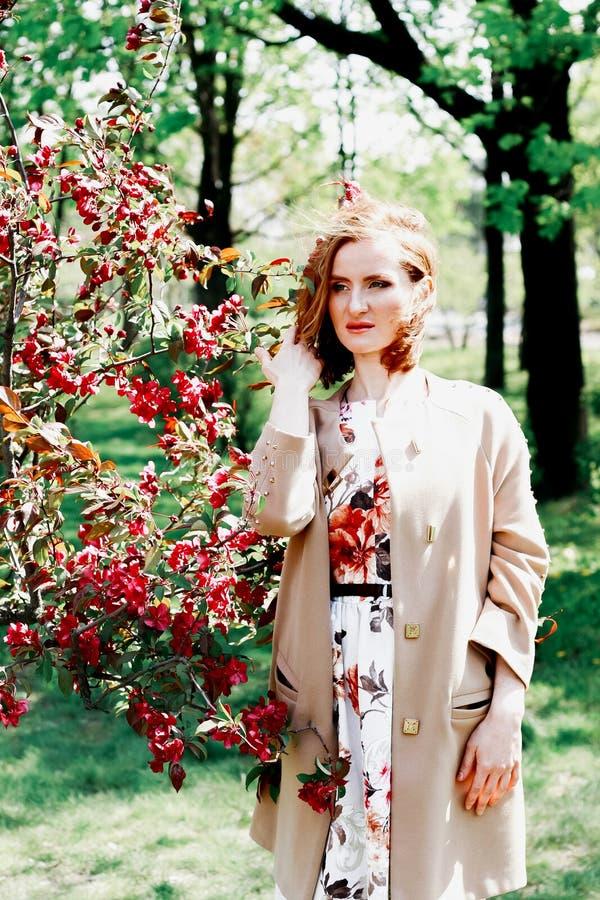 Jonge vrouw in een appelboomgaard Het portret van het roodharige meisje royalty-vrije stock afbeelding