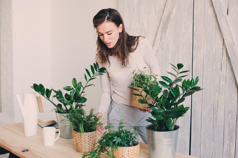 Jonge vrouw het water geven bloempotten thuis Toevallige levensstijlreeks in modern Skandinavisch binnenland stock foto's