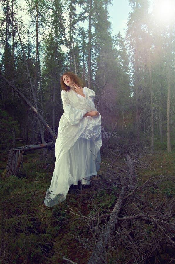 Jonge vrouw i het mystieke bos stock fotografie