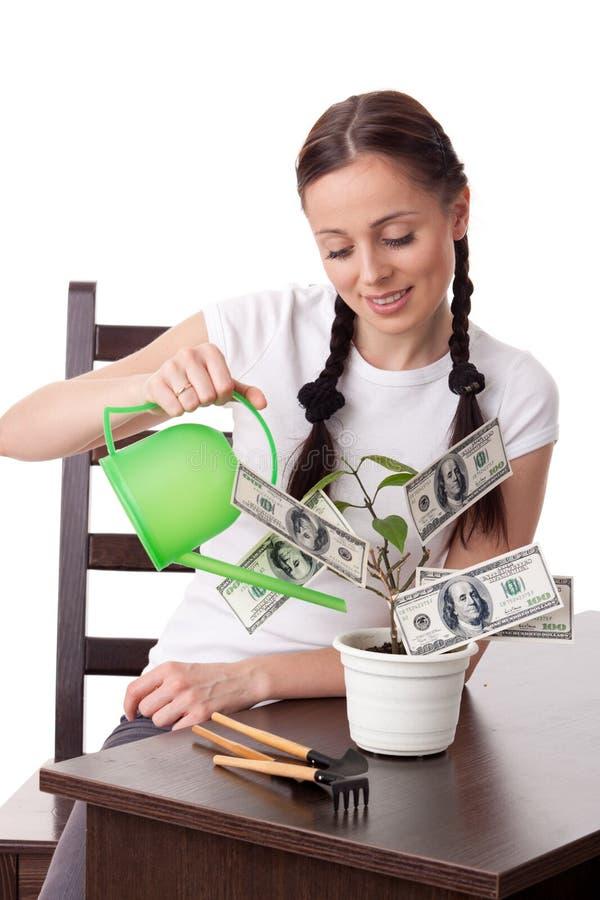 Jonge vrouw met geldboom. royalty-vrije stock afbeeldingen