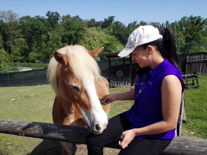 Jonge vrouw met paard royalty-vrije stock fotografie