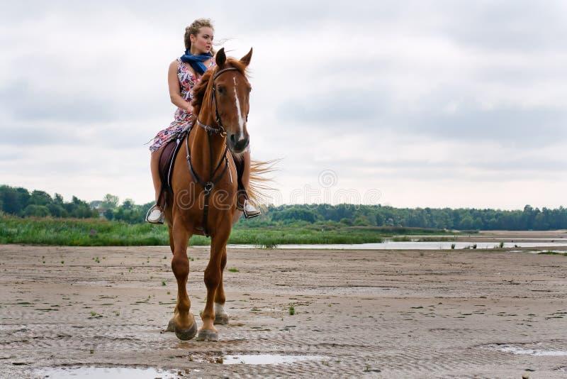 Jonge vrouw op een paard royalty-vrije stock foto