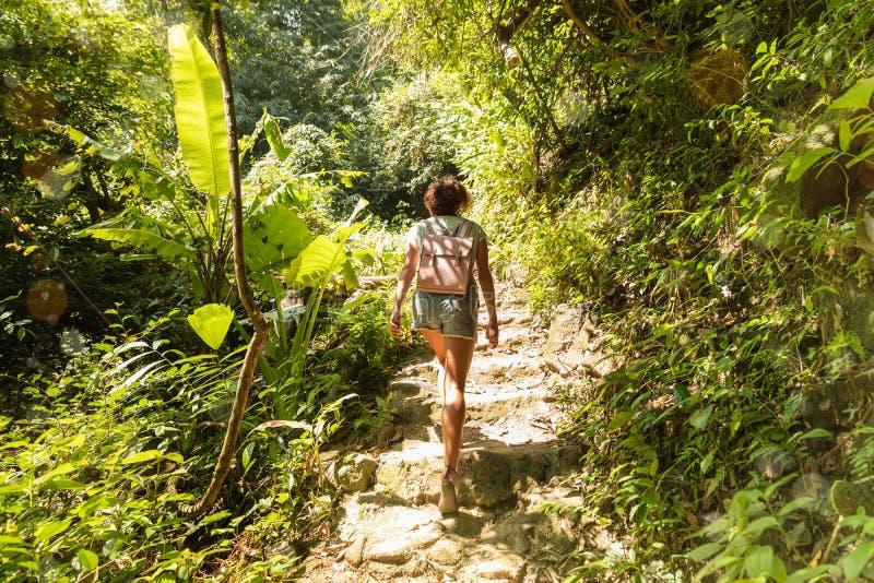 Jonge vrouw op het tropische regenwoud van de trekkingssleep royalty-vrije stock fotografie