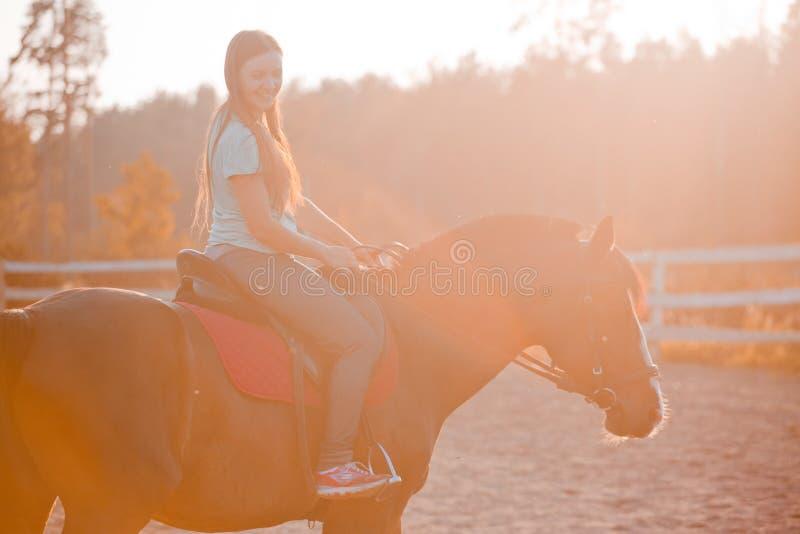 Jonge vrouw op paard royalty-vrije stock afbeelding