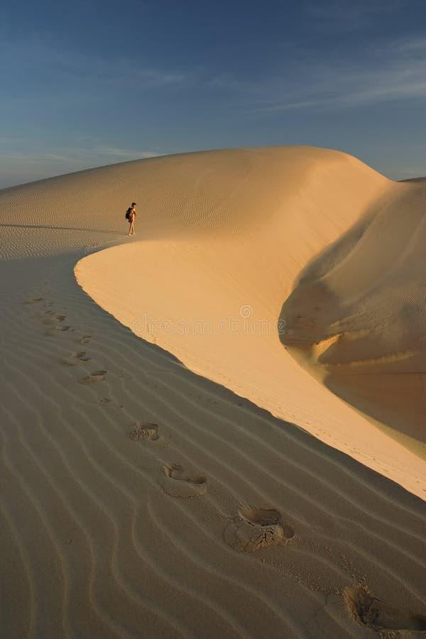 Jonge vrouw in woestijn royalty-vrije stock fotografie