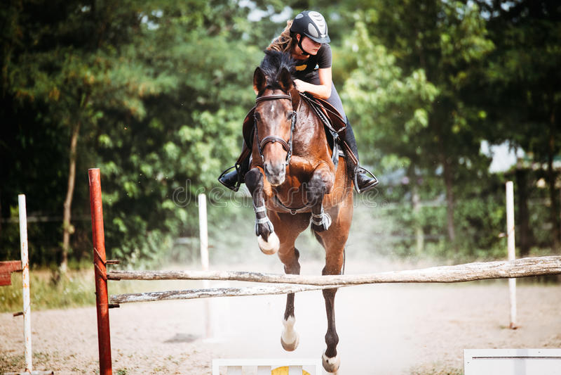 Jonge vrouwelijke jockey op paard die over hindernis springen royalty-vrije stock fotografie